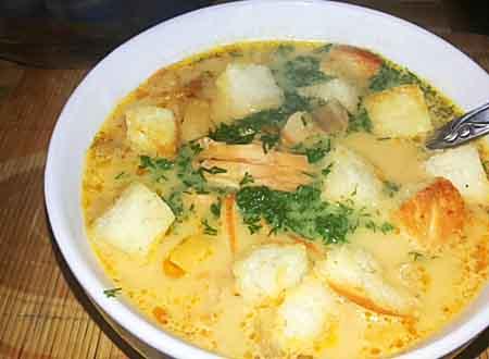 syrnuy-sup
