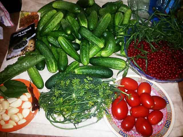 ogurcy-pomidory