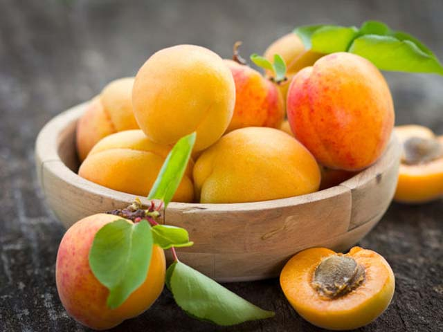 abrikosy