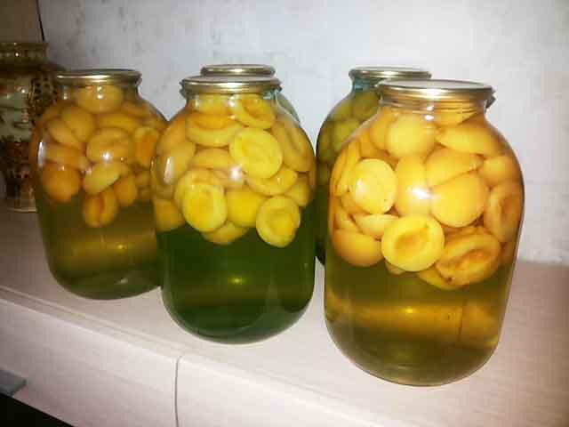 kompot-iz-abrikosov