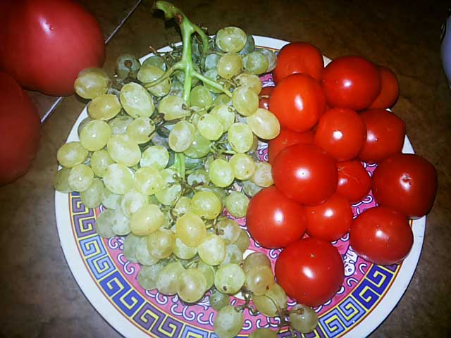 pomidory-vinograd