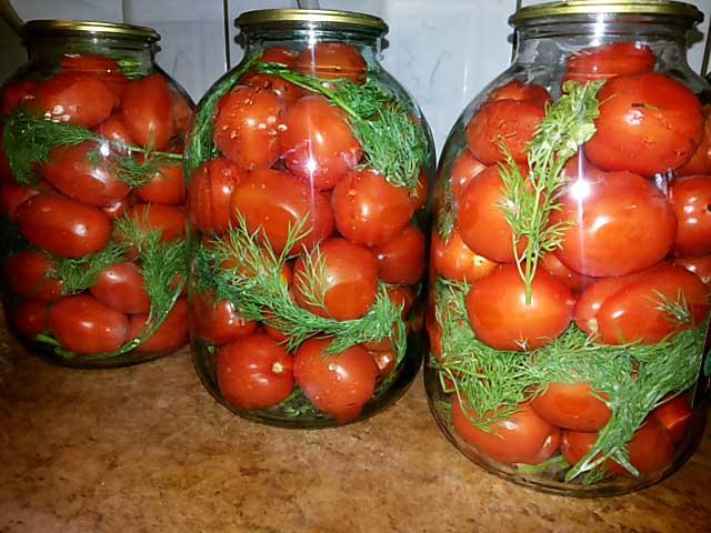 pomidory-banka