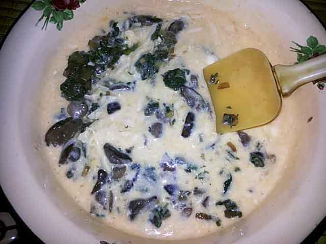 testo-nachinka