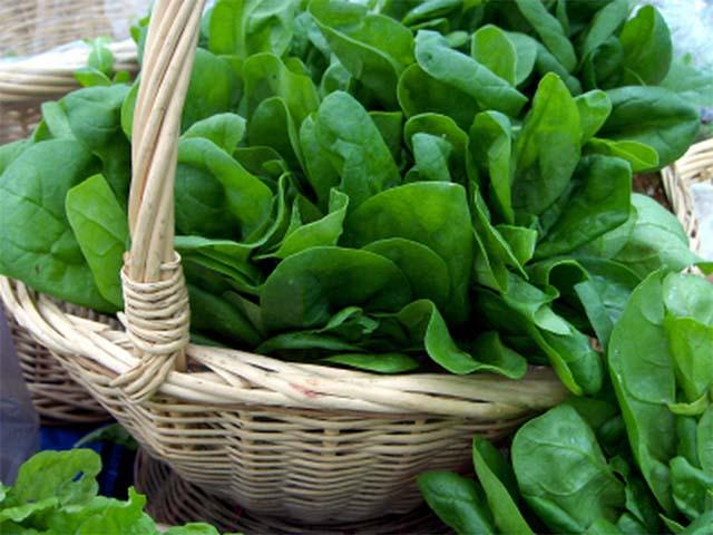 Супы из шпината — лучшие рецепты из свежего и замороженного овоща || Как приготовить Суп со шпинатом и говядиной