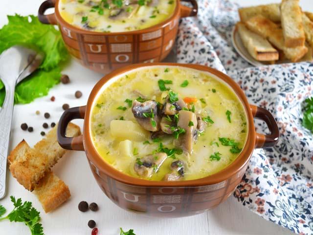 Суп грибной из свежих грибов с сыром