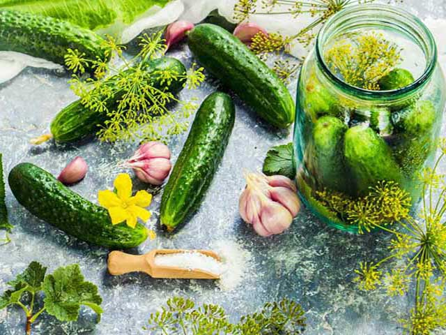 Быстрые маринованные огурцы с чесноком и зеленью