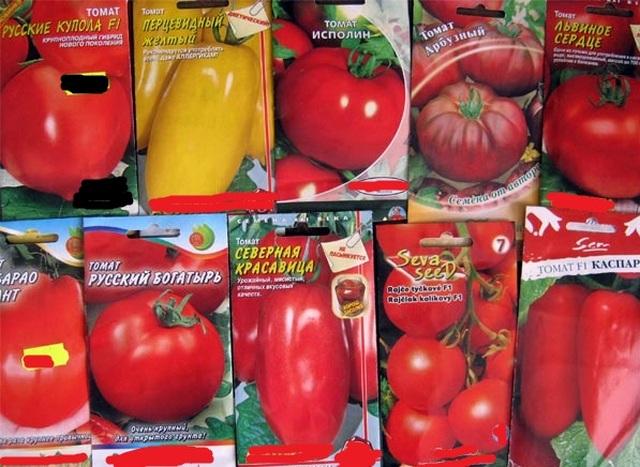 Посев семян помидор на рассаду
