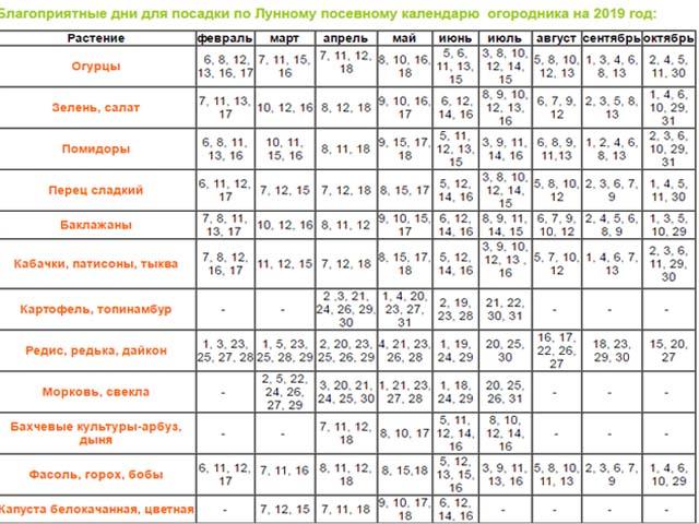 Когда сеять рассаду в феврале 2019 года: таблица благоприятных и неблагоприятных дней, лунный посевной календарь