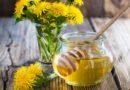Варенье из одуванчиков — 6 пошаговых рецептов приготовления