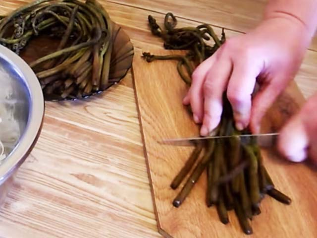 Папоротник орляк – рецепты приготовления из свежего папоротника и на зиму