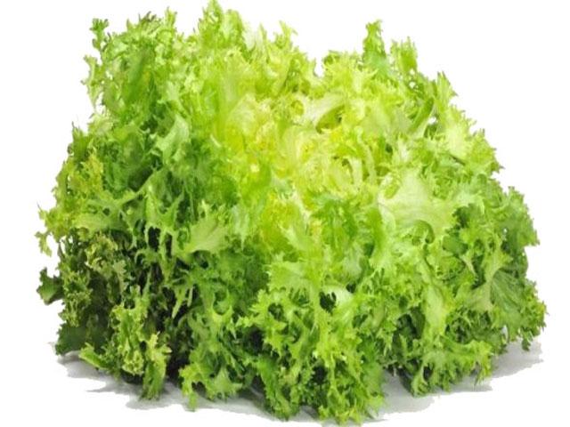 salat_фризе