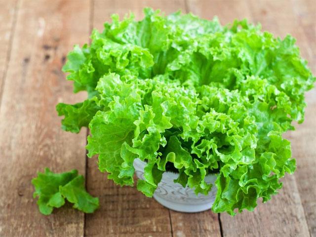 salat_latuk