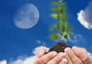 Лунный посевной календарь для садоводов и огородников на 2019 год