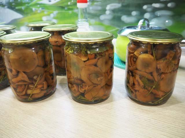 Маринованные рыжики — самый вкусный рецепт на зиму