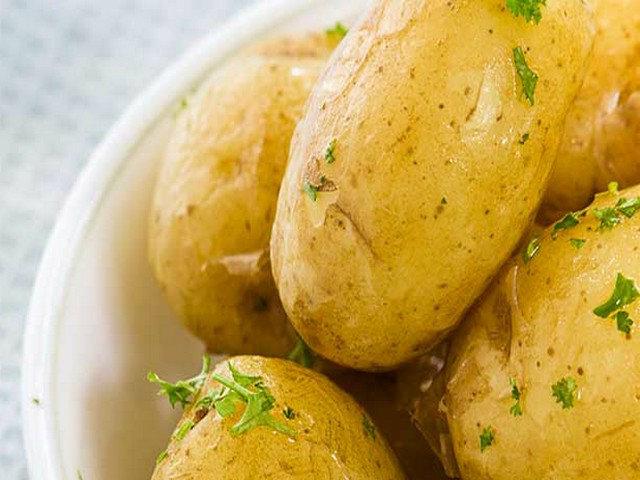 itog-kartofel-mundir-mikro.jpg